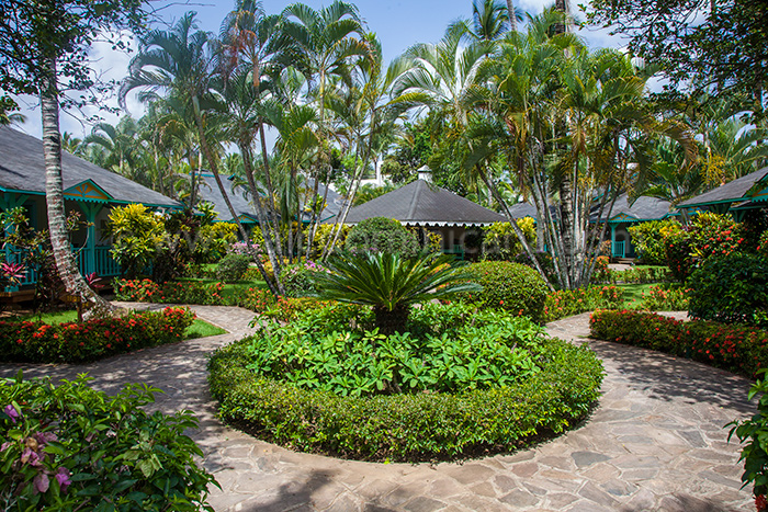 garden las palmas location bungalow las terrenas 01
